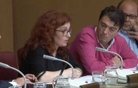 Los accesos a Albacete preocupan en el pleno