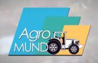 "Agromundo T2 E5  ""Especial Aceite"" 2 de Diciembre de 2017"