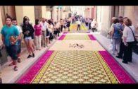 Más de 600 alfombristas preparan la próxima edición de las alfombras de serrín de Elche de la Sierra