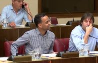 Babcock y el IMD, protagonistas del penúltimo pleno de la legislatura