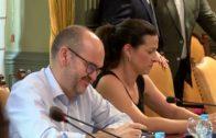 Primera sesión plenaria en la Diputación
