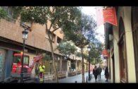 EDITORIAL | Improvisadas obras en la calle Gaona