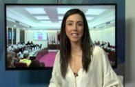 Los gimnastas junior del Club Palas se hacen con el Campeonato de España