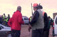 La SAO denuncia el permiso de caza en pleno estado de alarma