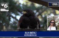 La Sociedad Albacetense de Ornitología no ve en la caza una actividad esencial