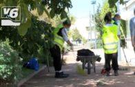 """Las cuadrillas del Plan de Empleo se """"afanan"""" en la ciudad"""