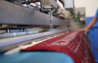 Paso a Paso #13 | Cómo cuidar las alfombras