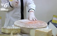 El Plan para la Reactivación Económica ha invertido 17,3 millones en 9.700 empresas albaceteñas