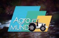 Sobre el Terreno | Reportaje 'Encinares Vinícola Villarrobledo'