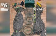 BREVES | Cazaba conejos con hurón en Tinajeros