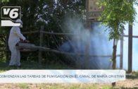 MEDIO AMBIENTE | Comienzan las tareas de fumigación en el canal de María Cristina